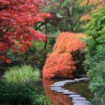 Založení zahrady svépomocí, jak na to